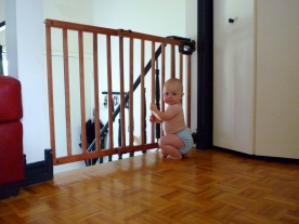 Oh baby gate, how I love thou!