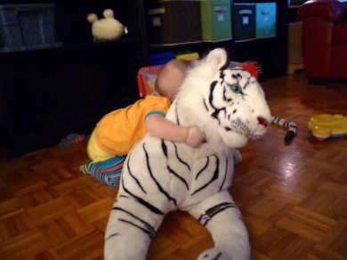 He may not know what a bear hug is, but he sure knows what a tiger hug is!
