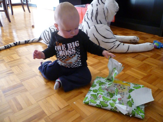 Figuring out how to unwrap his gift.