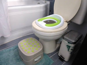 You've already seen the potty seat.  Here's the training seat and step stool.